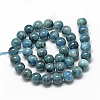 Natural Apatite Beads Strands G-R446-6mm-11-2