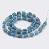Natural Apatite Beads Strands G-F568-015-2