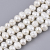 Natural Cultured Freshwater Pearl Beads Strands PEAR-Q015-032A-01-1
