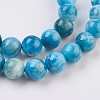 Natural Apatite Beads Strands G-F568-020-10mm-3