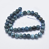Natural Apatite Beads Strands G-K246-38-2